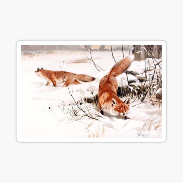 Zorros en la nieve - W. Kuhner (remasterizado digitalmente) Pegatina