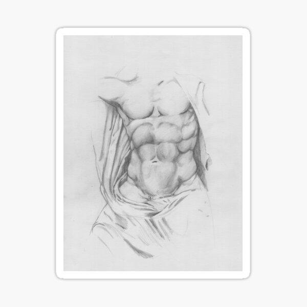 Study: Torso of Zeus Sticker