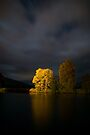 Sammys Walk, River Tay, Aberfeldy, Scotland by Cliff Williams