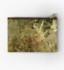 Mourning Cuttlefish Studio Pouch
