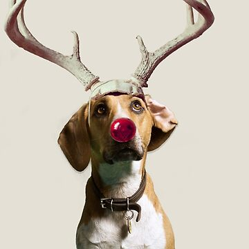 rudolf the beagle by EllLang