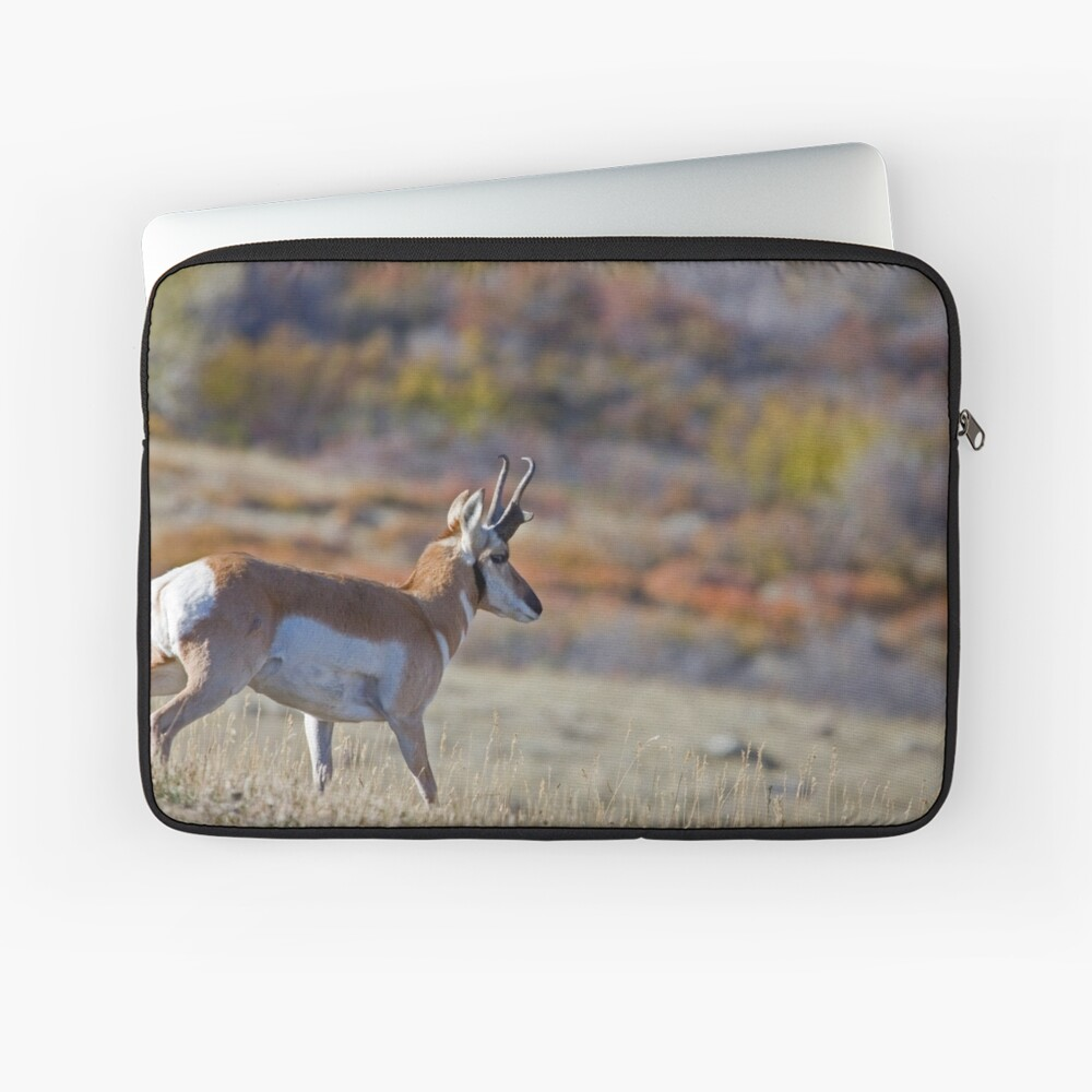 Pronghorn, Tapestry of Fall Color Laptop Sleeve