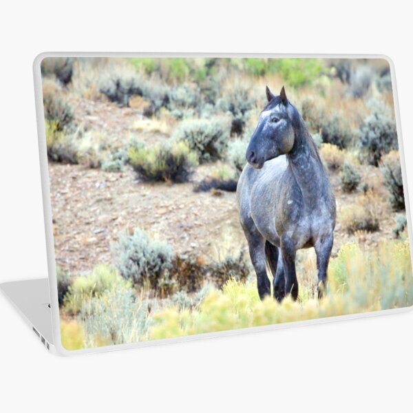 The Watchful Eye - Wild Blue Roan Stallion Laptop Skin