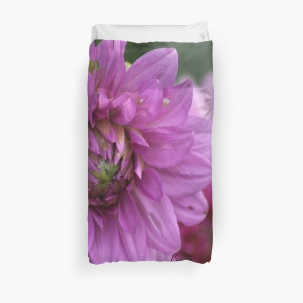 Soft Color of the Dahlia Flowers Duvet Cover