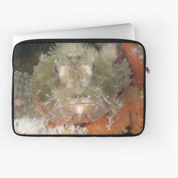 Red Rock Cod Laptop Sleeve