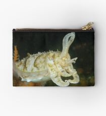 Mourning Cuttlefish - Sepia plangon Studio Pouch