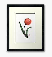 Tulipan Framed Print