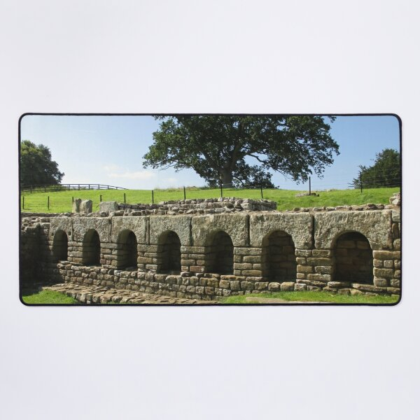 M.I. #113 |☼| The Changing Hall - Shot 2 (Hadrian's Wall) Desk Mat