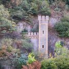 Castle along Rhine Gorge by Imagery