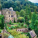 A View from Heidelberg Castle by Imagery
