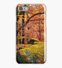 Mystery of Autumn iPhone Case/Skin