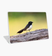 Willie Wagtail Laptop Skin