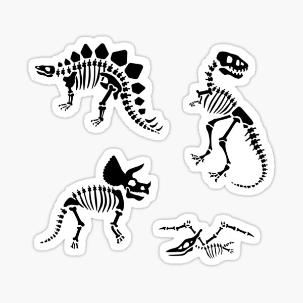 Dinosaur Fossils in Black Sticker