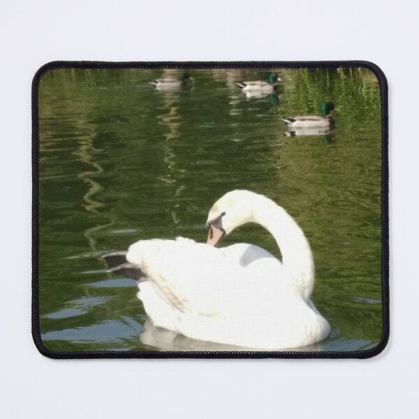 M.I. #65  ☼  Swan - Shot 23 (Pearson Park) Mouse Pad