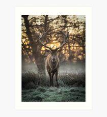 Love you Deer Art Print