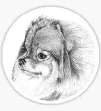 Pommern Sticker