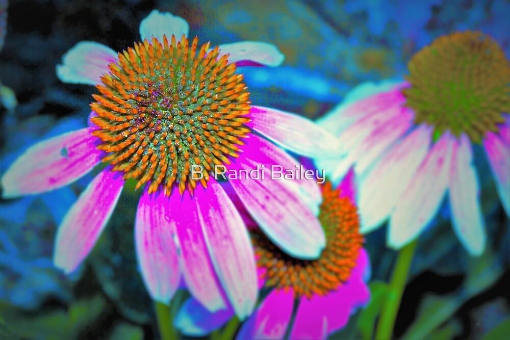 Purple coneflowers by ♥⊱ B. Randi Bailey