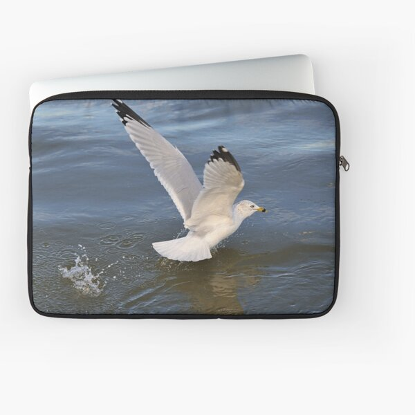 Gull on the river Laptop Sleeve