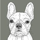 French Bulldog Portrait by Adam Regester