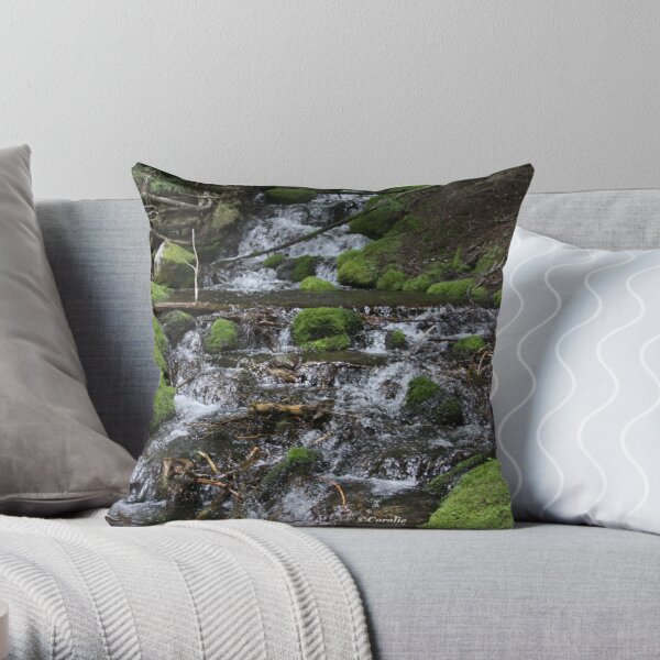 Falling Cascades of the Cascade Mountains Oregon Throw Pillow