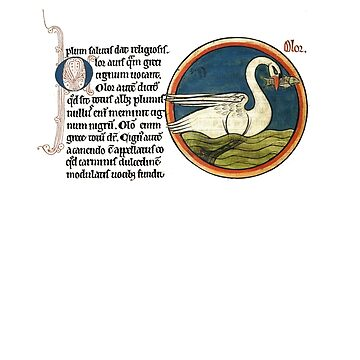 Medieval swan by interarte