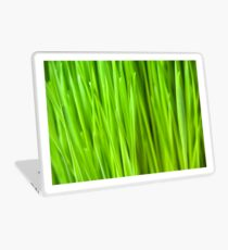 Fresh Wheatgrass background Laptop Skin