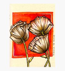 Inktober Poppies Photographic Print