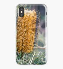 bottlebrush iPhone Case/Skin