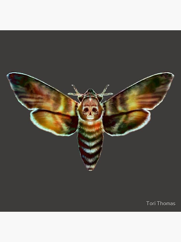 Death Moth by IrotTori