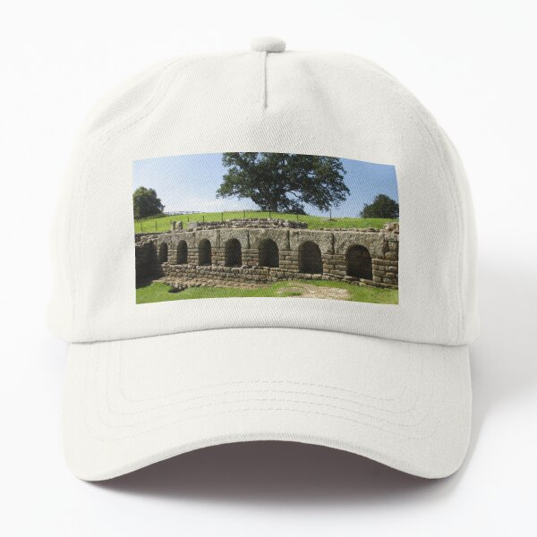 M.I. #113 |☼| The Changing Hall - Shot 2 (Hadrian's Wall) Dad Hat