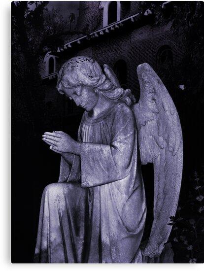 Angel by merrywrath