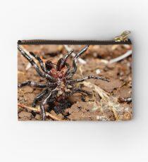 Funnel-web spider Studio Pouch