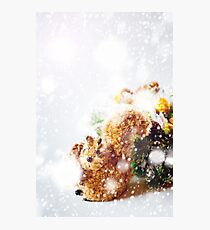 Christmas Background with Hand Made Toy Squirrel Photographic Print