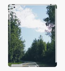 Road in Alaska, 2016 iPad Case/Skin