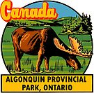 Algonquin Provincial Park Ontario Vintage Travel Decal by hilda74