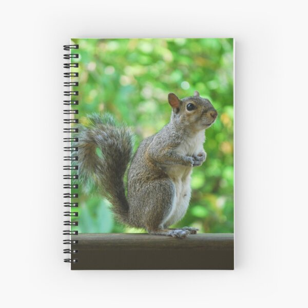 Excuse please, can spare a peanut? Spiral Notebook