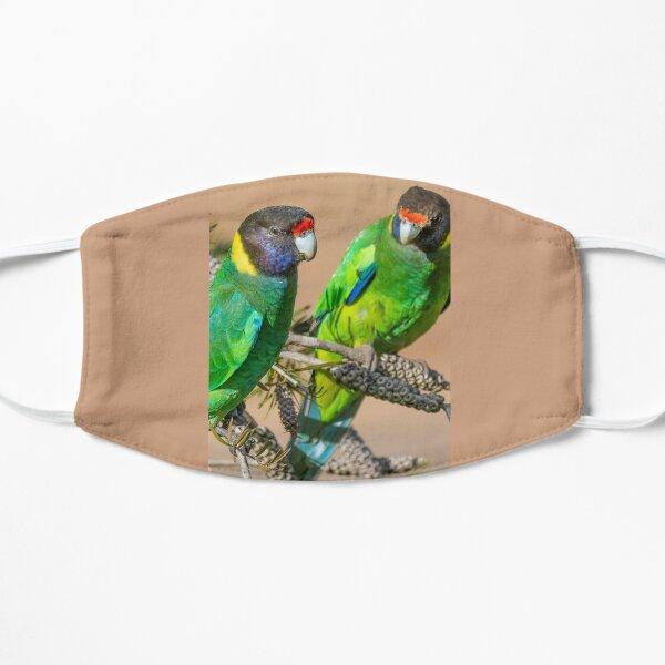 Perroquet à collier australien Masque sans plis