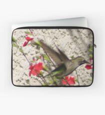 Hummingbird visit Hot Lips Sage  Aguilar Garden 5ed6ffe4dd168