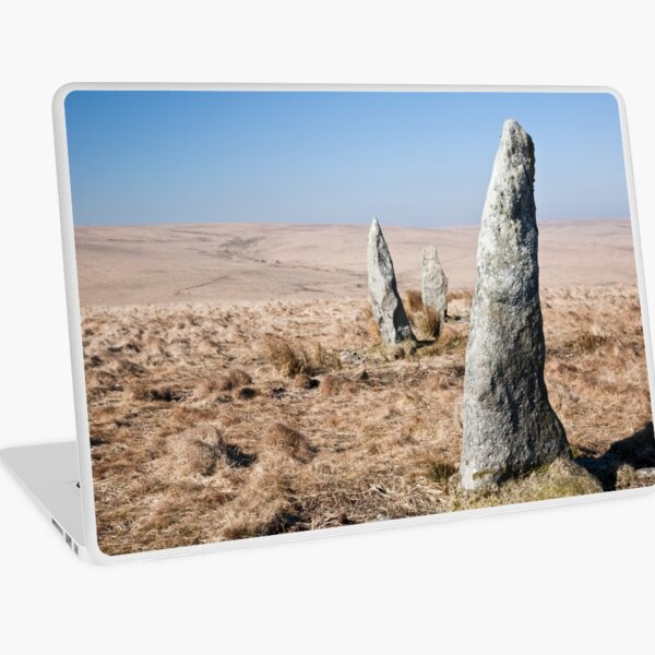 Lean to the Wind Laptop Skin