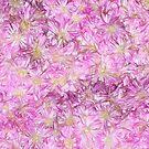 Sketcher's Daydream of Pink Daisies by Rasendyll