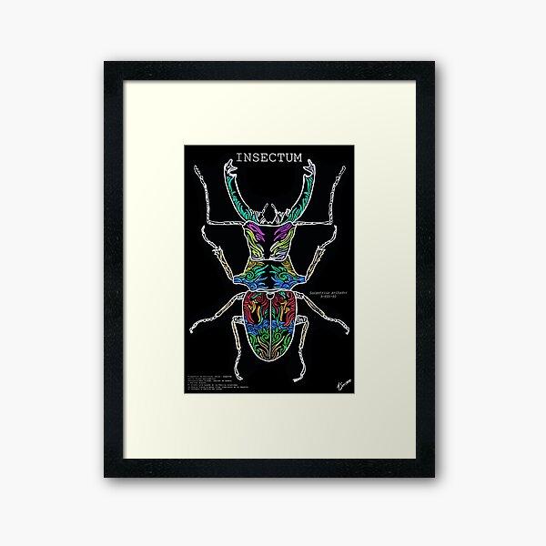 Cantharolethrus steinheili 9-FDV-40 ASerranoestudio Framed Art Print