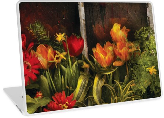 Flower - Tulips in a window by Michael Savad