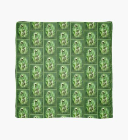 Fiddlehead Ferns Scarf