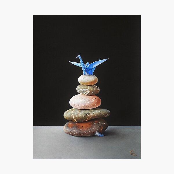 The nest Photographic Print