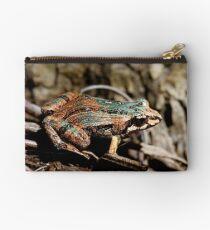 Common Eastern Froglet, Crinia signifera  Studio Pouch