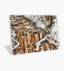 Winter - Natures Harmony Laptop Skin