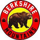 Ski Berkshire Mountains Massachusetts Berkshires Skiing Climbing Hiking Camping Biking by MyHandmadeSigns
