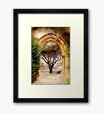 Seasons Framed Print