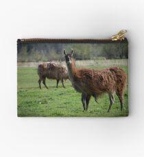 Llama Country Studio Pouch
