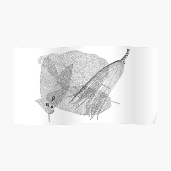 Leaves in black and white Poster